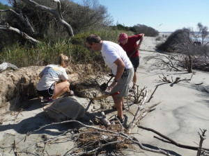 Abby, David, and Thommy digging out a trap.  Many times it took leveraging the weight of 3 adults to free a trap.