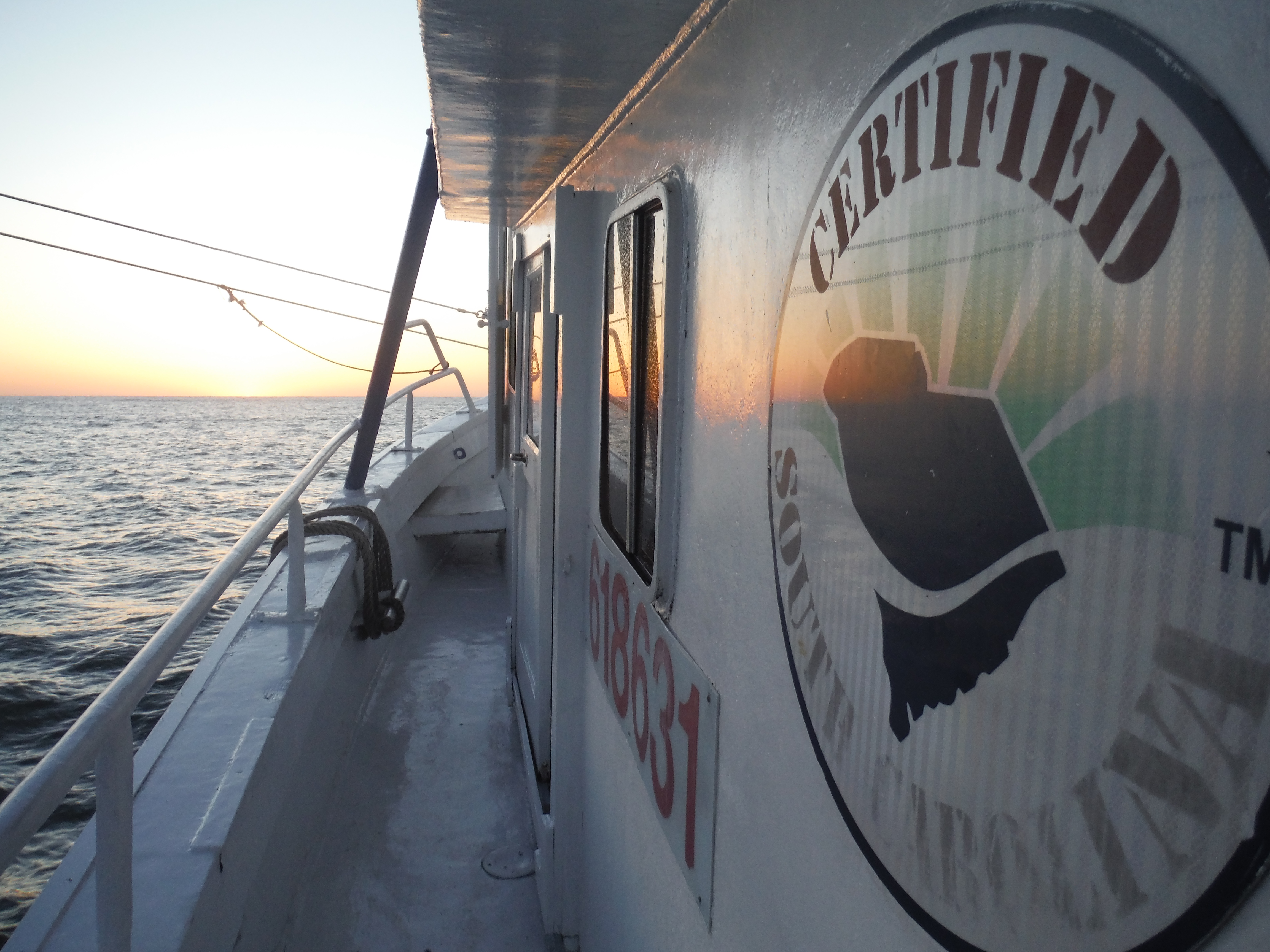 Shrimp Boats in the South - My Day as a Shrimper | Wounded